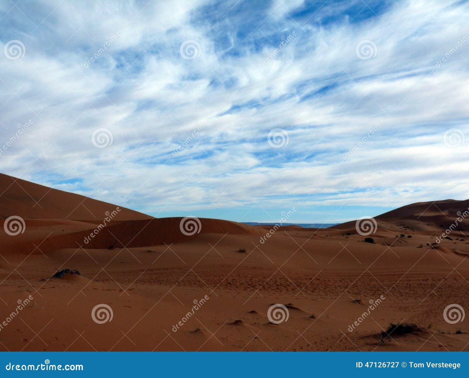 Horizon sur le paysage saharien image stock image du for Agence horizon paysage