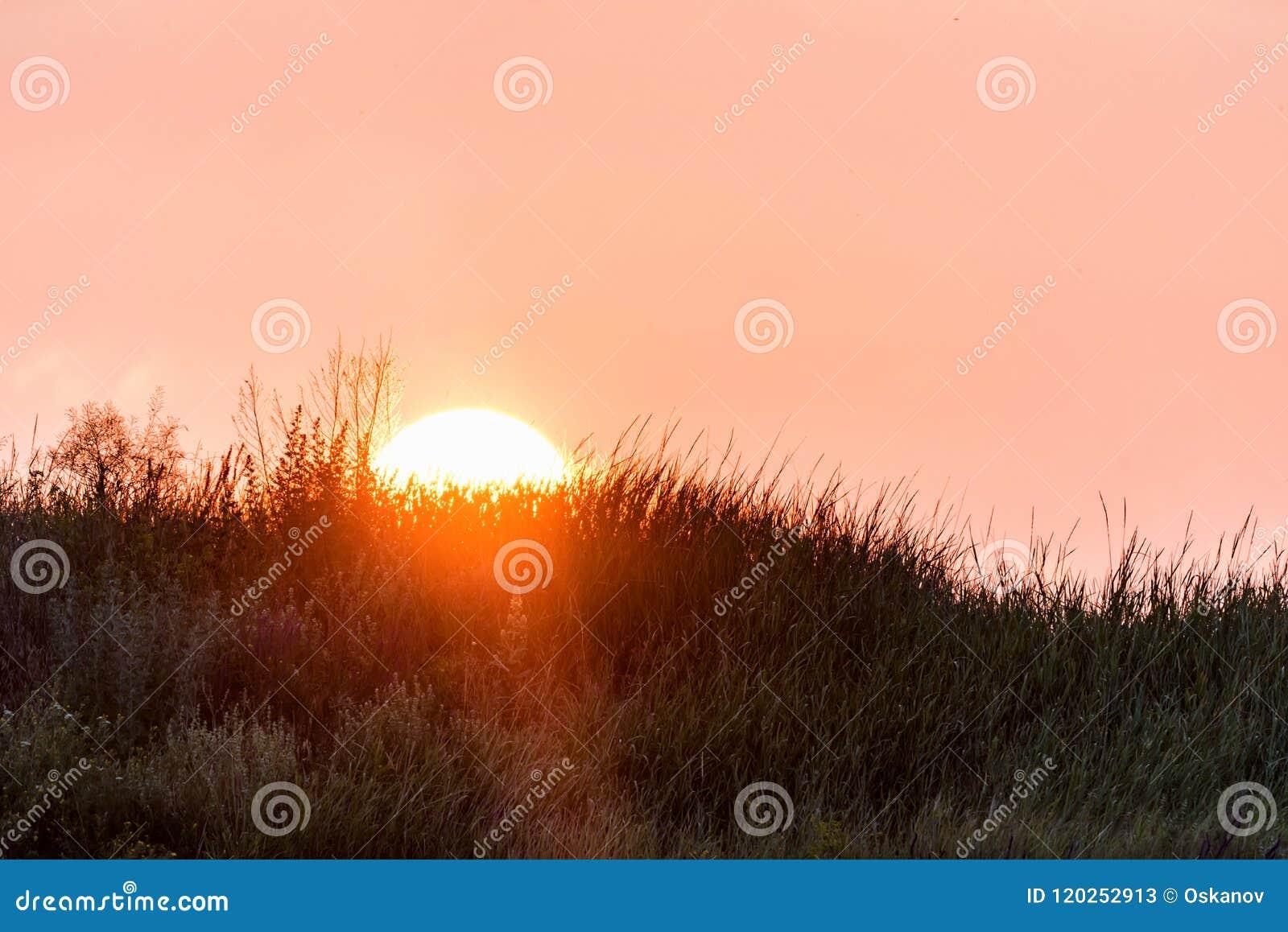 Horizonlijn van platteland met zon het plaatsen