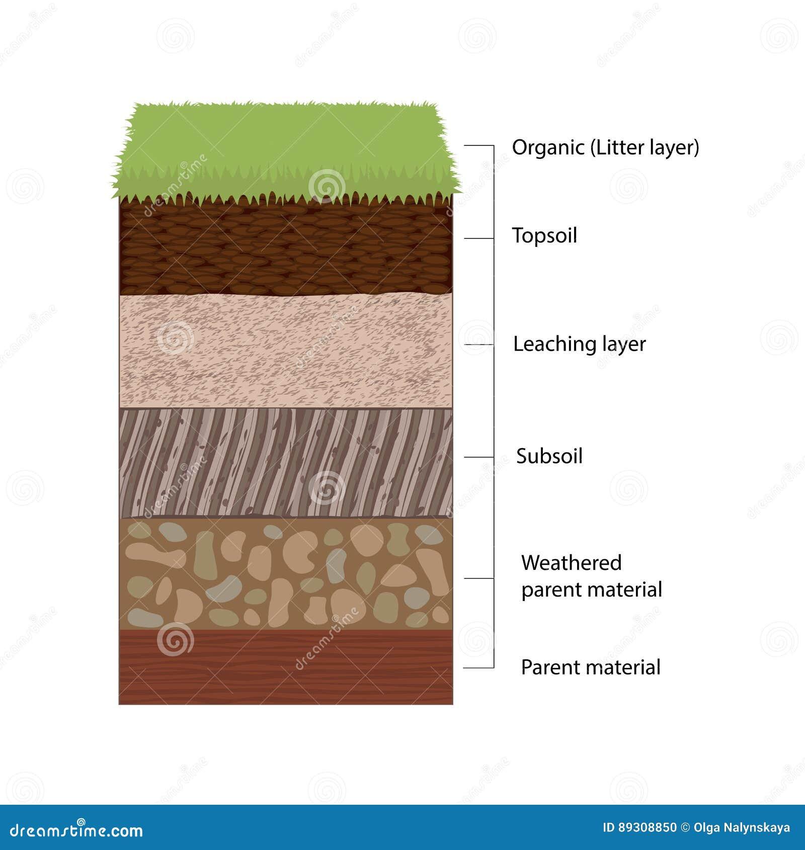 Horizons et couches de sol illustration de vecteur. Illustration