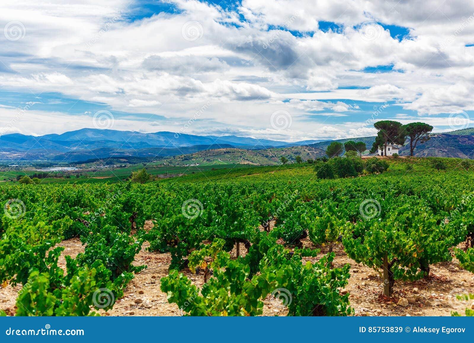 Horizontal avec la zone verte photo stock image 85753839 for Agrandissement maison zone verte