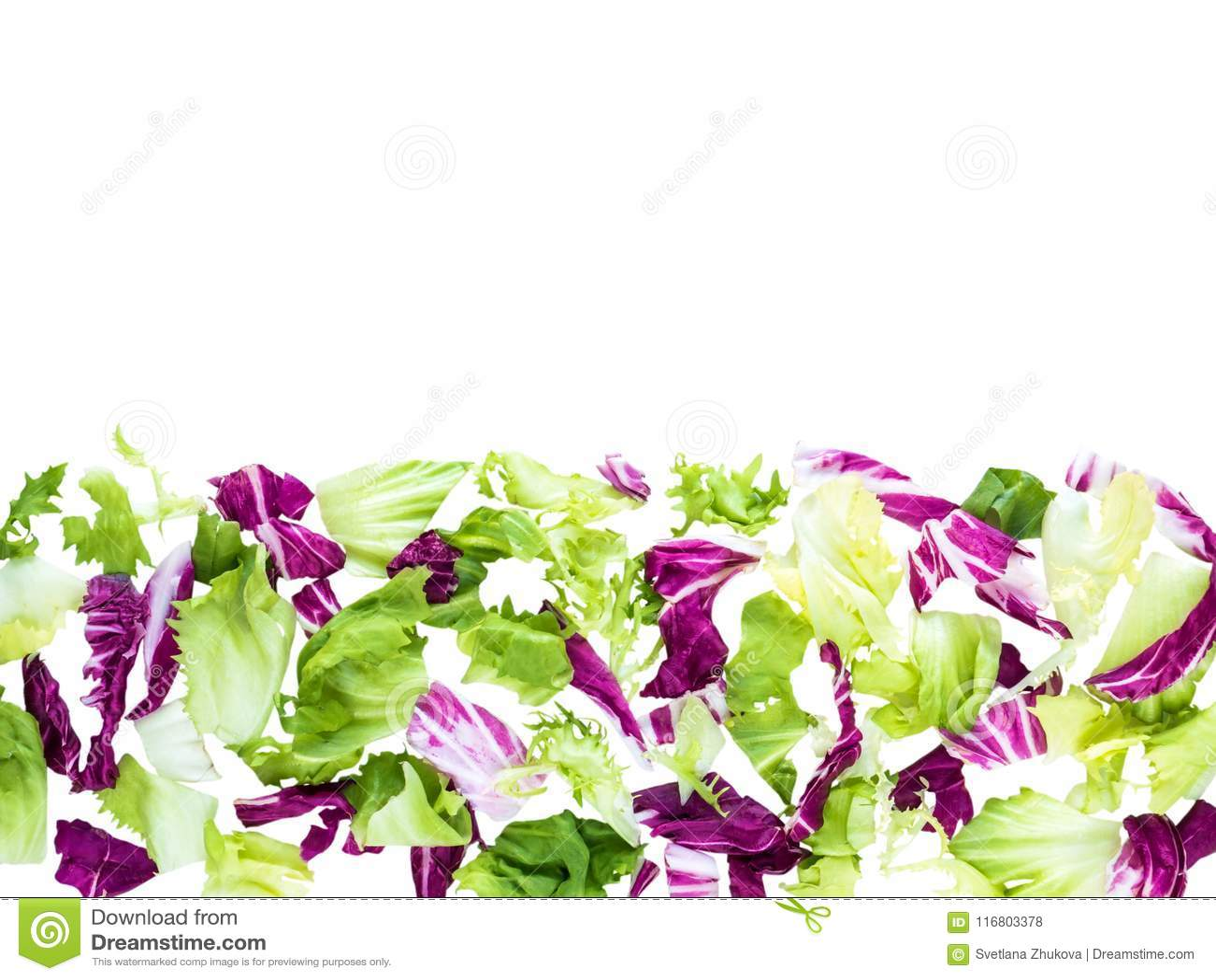 Horizontal border of mixed salad leaves top view