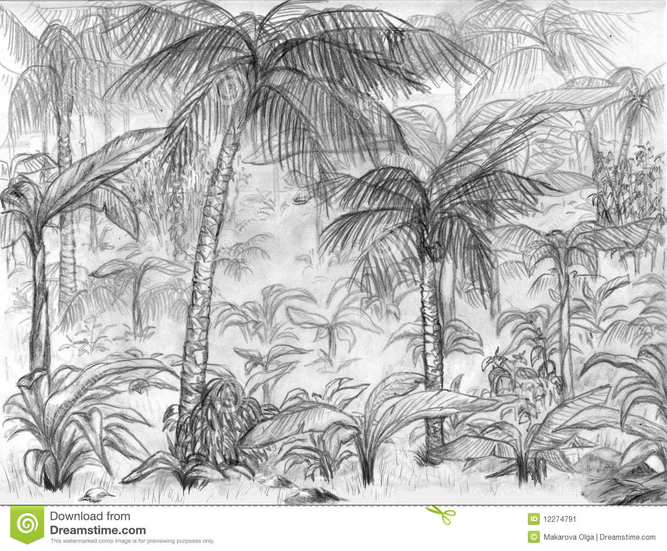 Horizontal de jungle illustration stock illustration du - Dessin de jungle ...