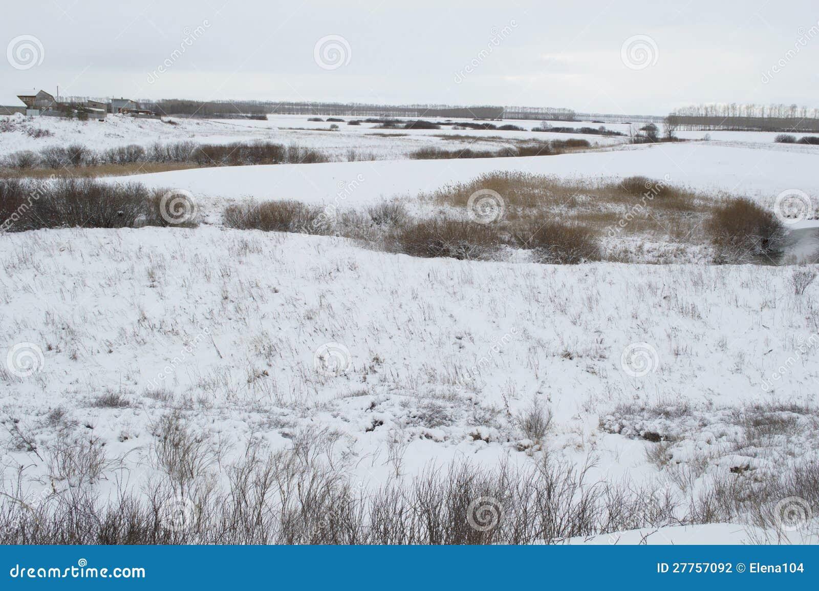 Horizontal de l hiver de Russie