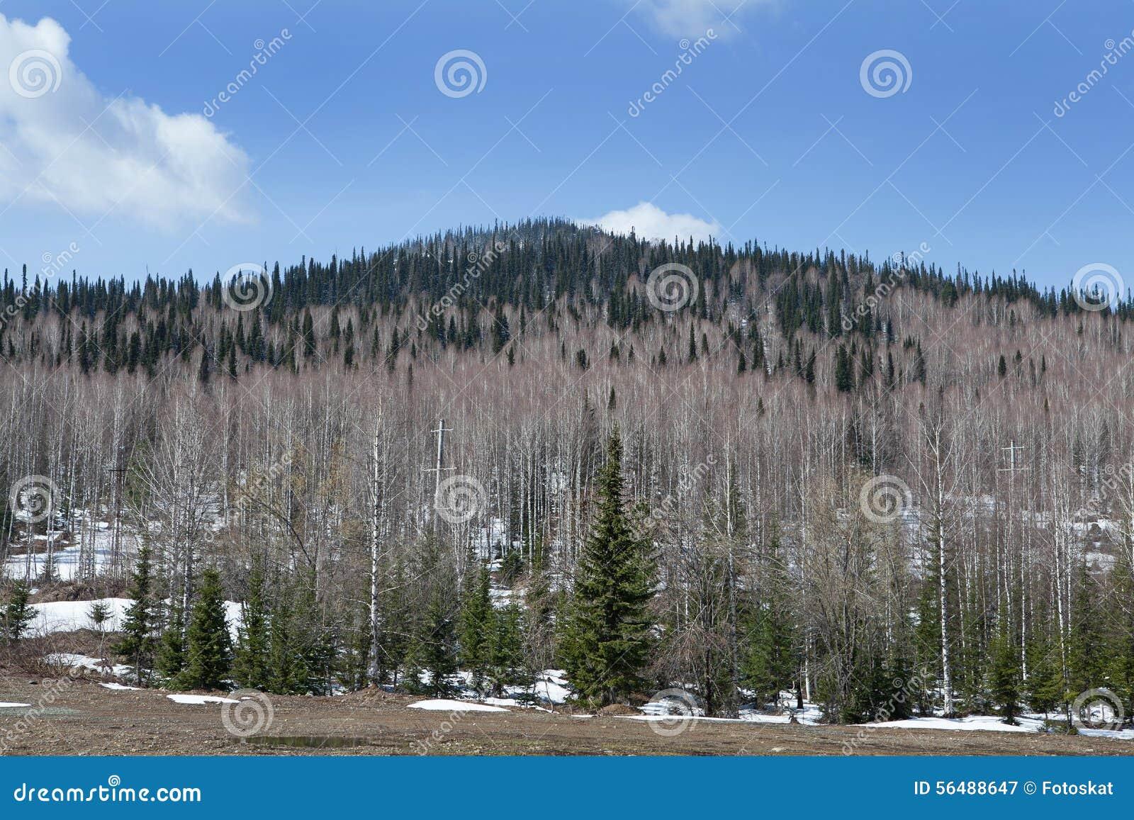 Horizontal de montagne
