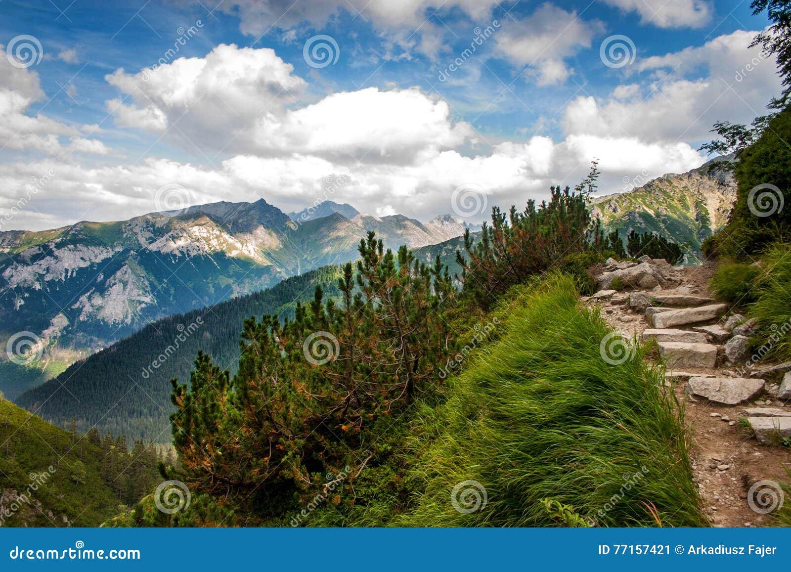 Horizontal de montagne Haut Tatras, Pologne