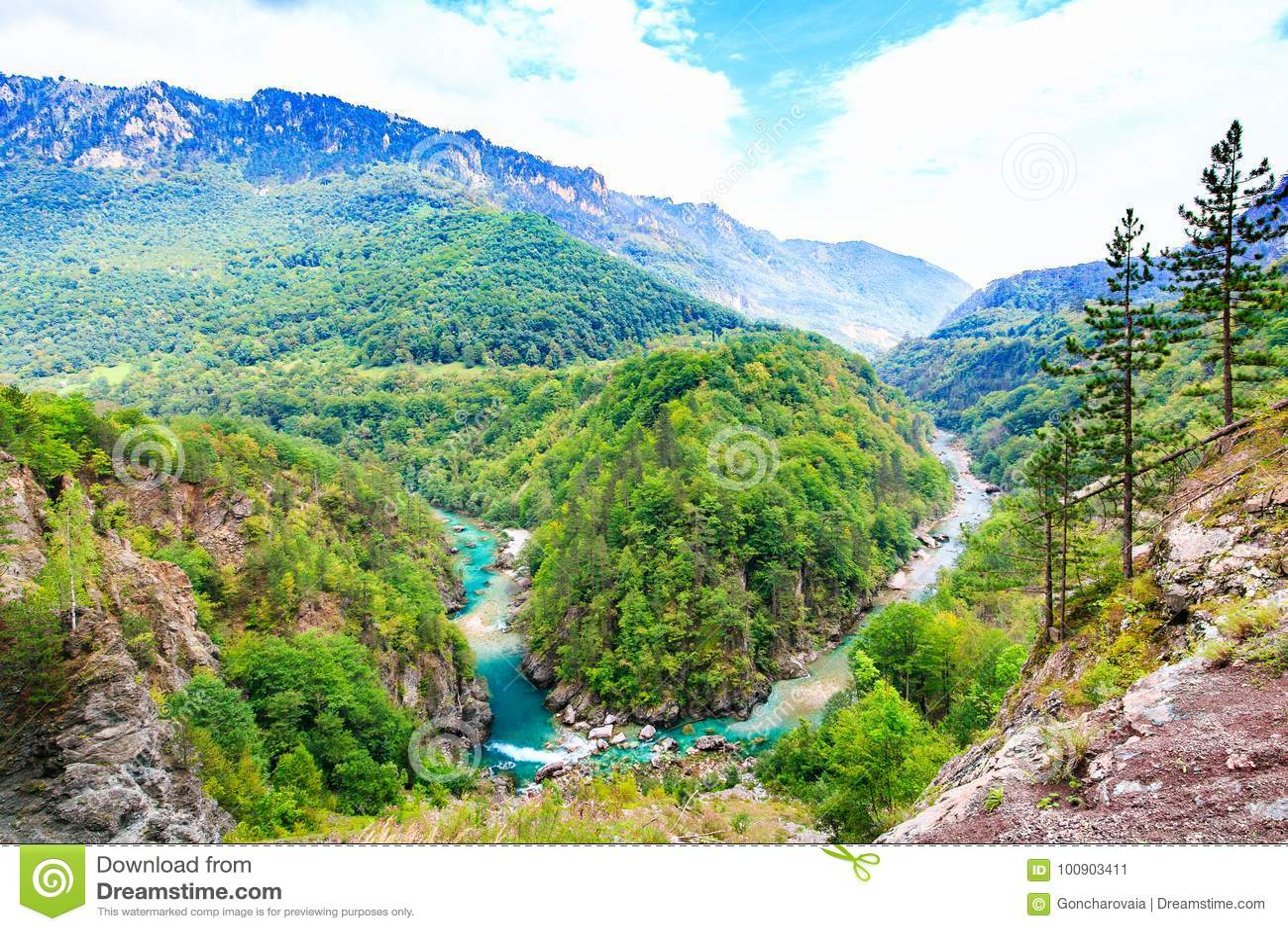 Horizontal de montagne Tara River Canyon, parc national de Durmitor, Monténégro