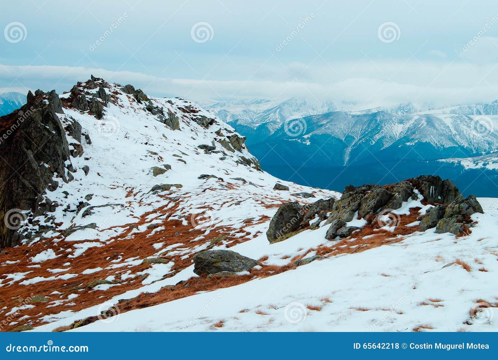 Horizontal de montagnes de l hiver