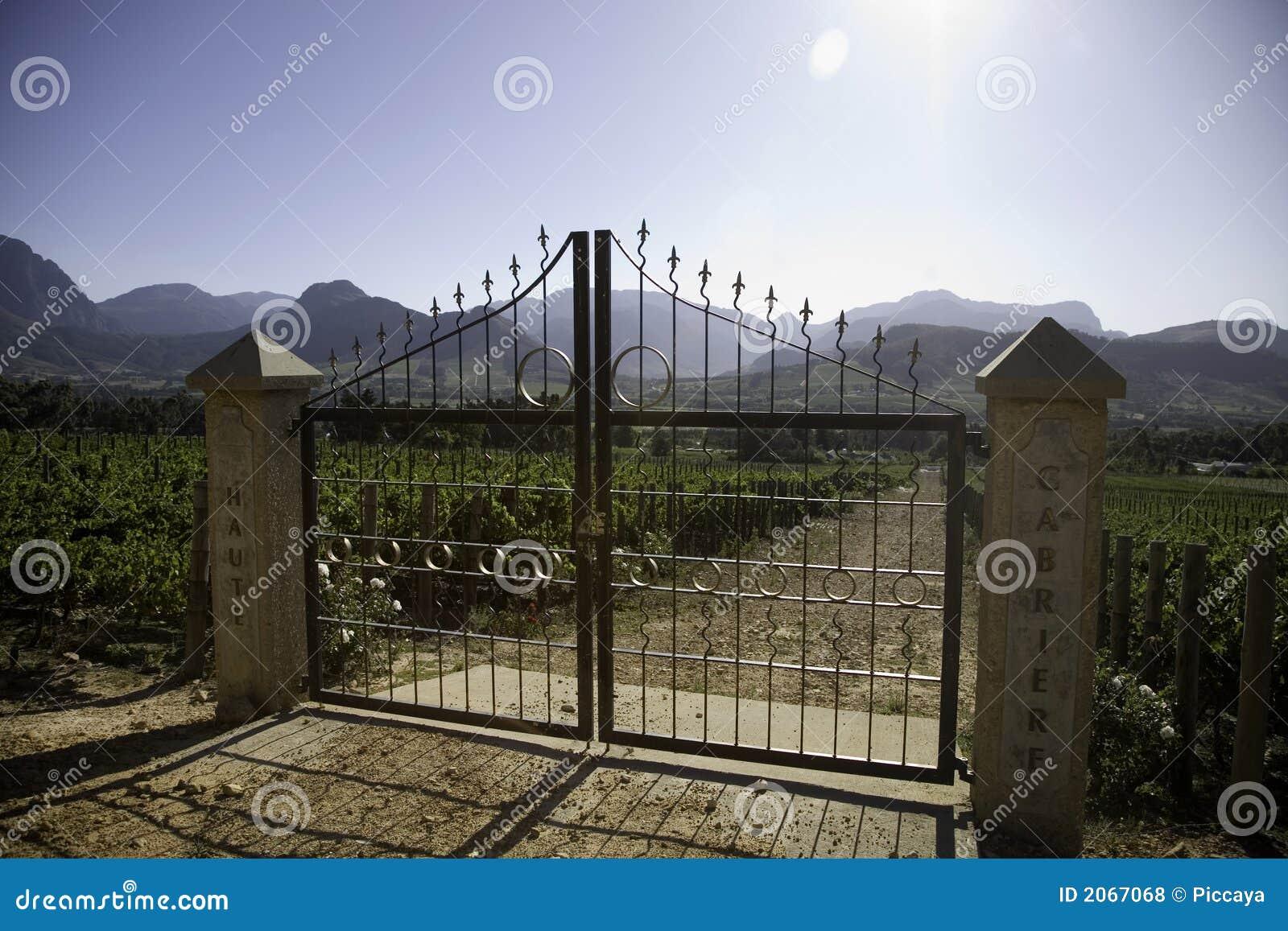 Horizontal des établissements vinicoles