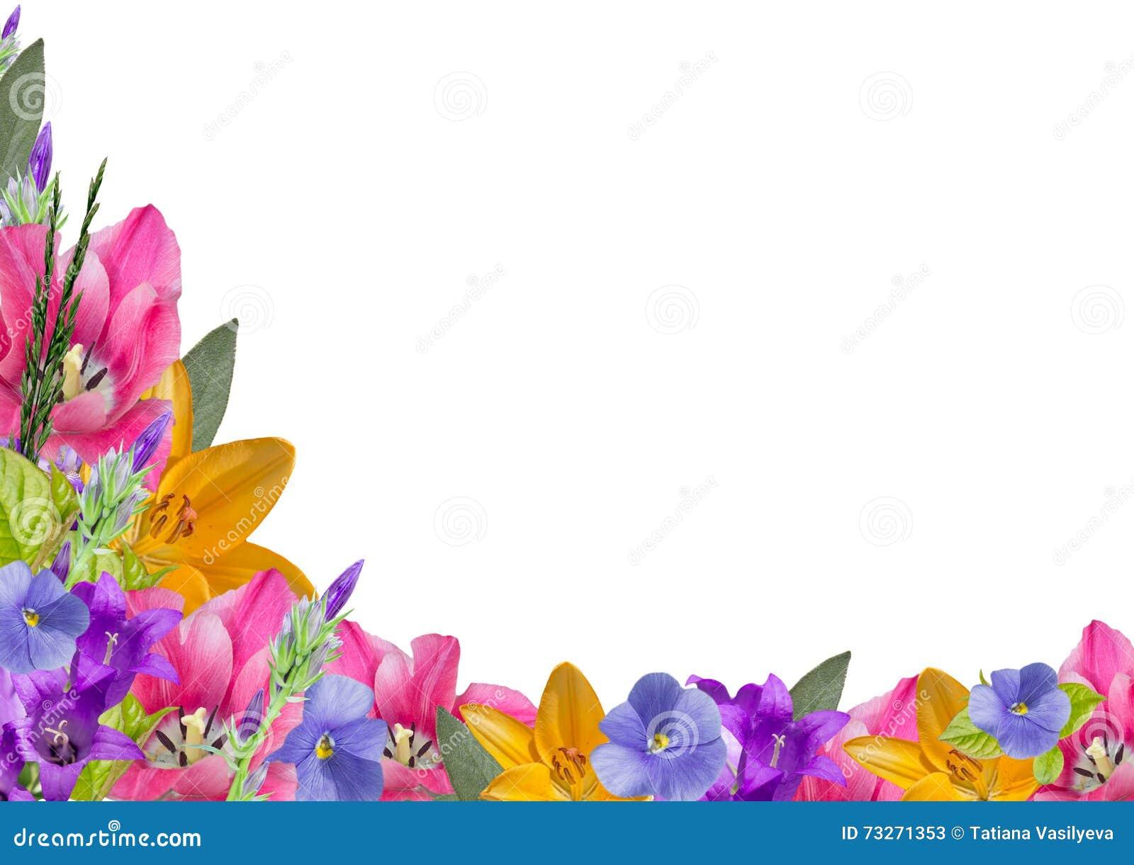 Horizontal Frame Flowers Border Stock Photos - 816 Images