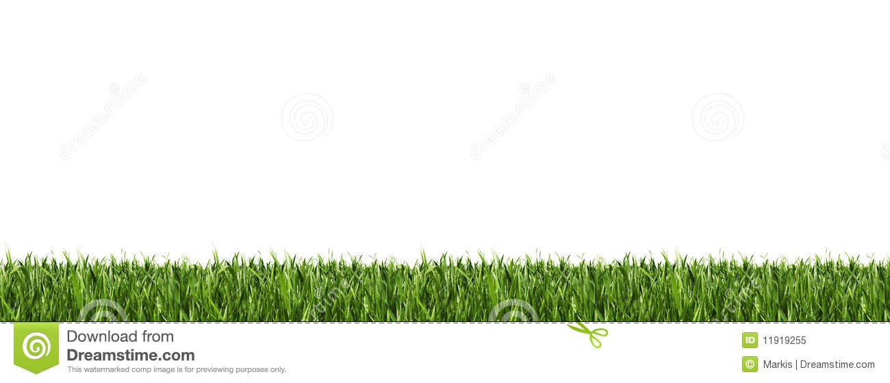 Horizontal grass border stock image image of long lawn for Best grasses for borders