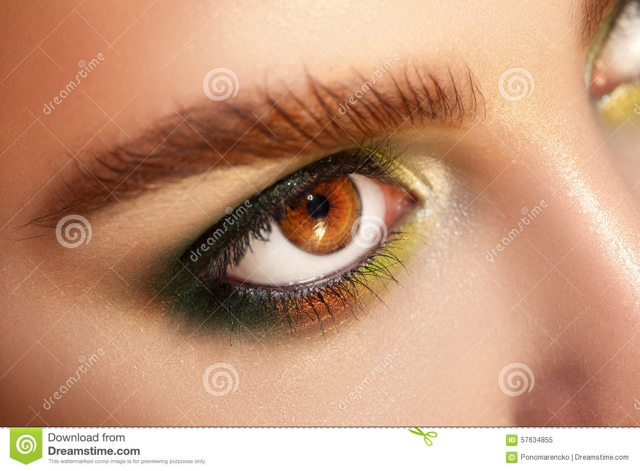Horizontal Macro Photo Of Brown Eyes With Green Colors Makeup Stock