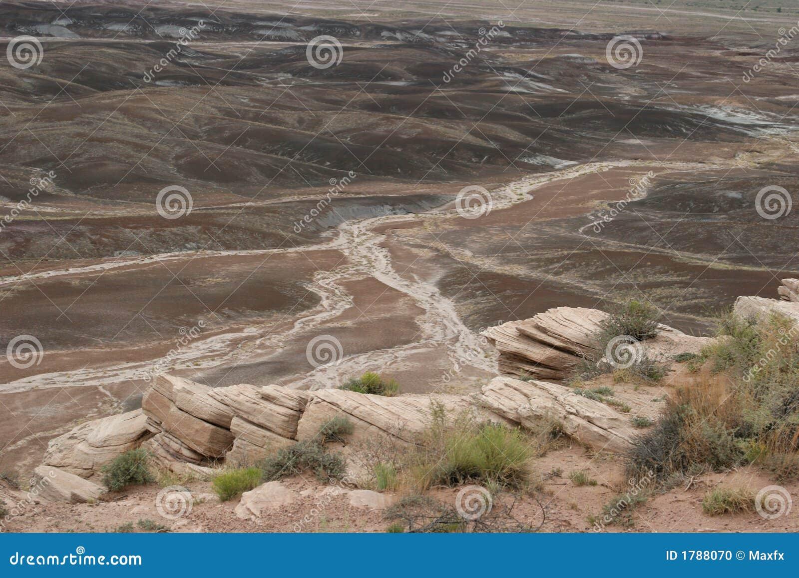 Horizontal peint ahurissant de désert