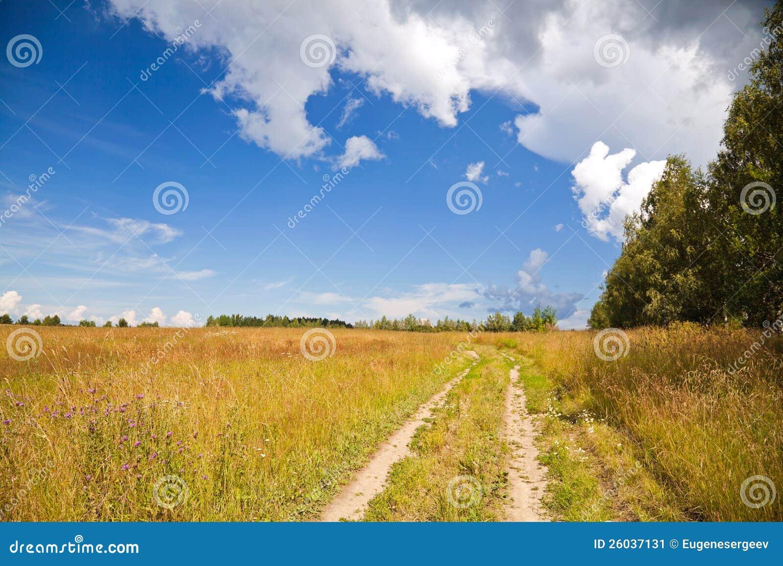 Horizontal rural russe avec le chemin de terre