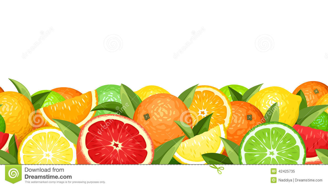 Horizontal seamless background with citrus fruits. Vector illustration.