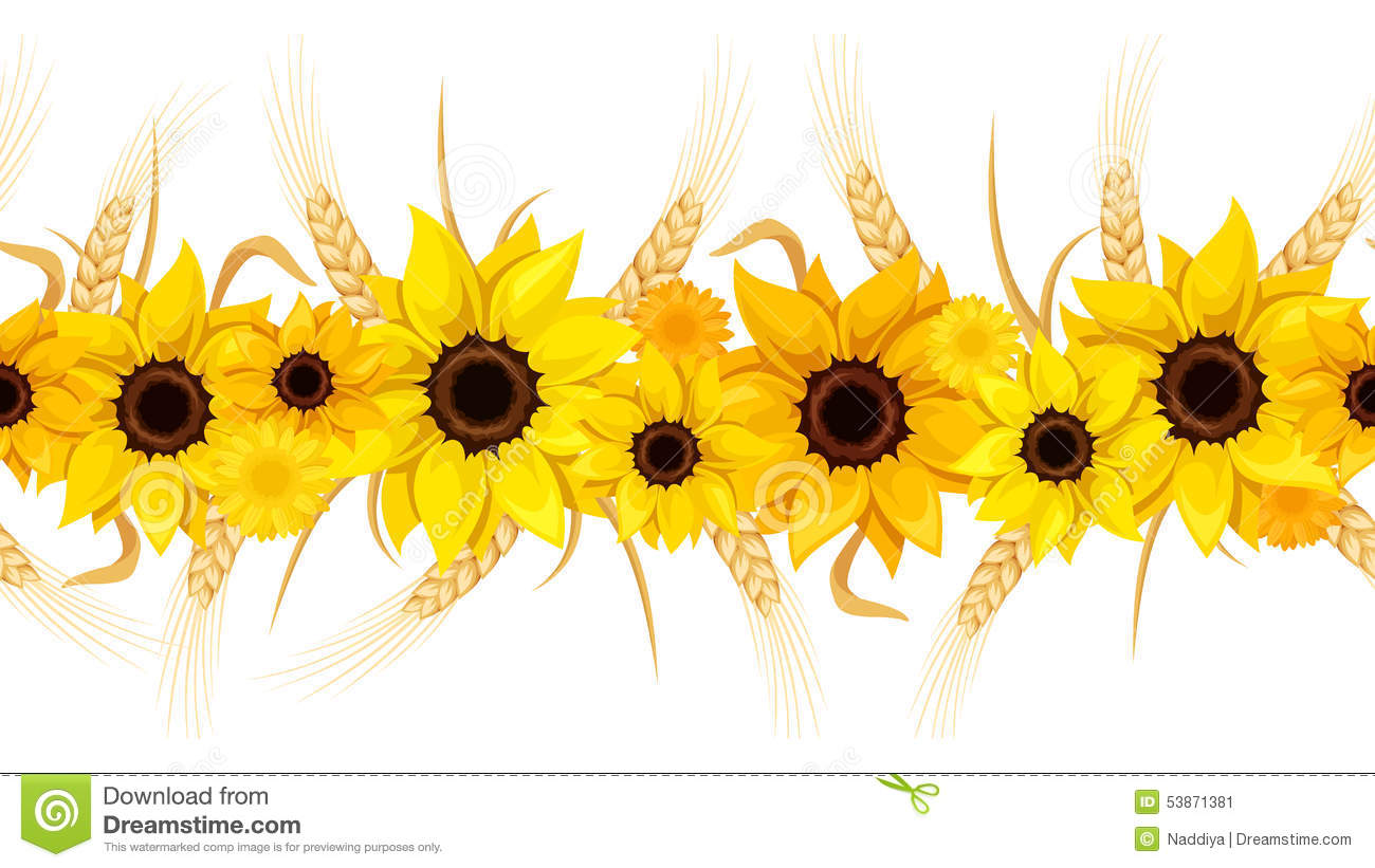 Horizontal Seamless Background With Sunflowers And Ears Of ...