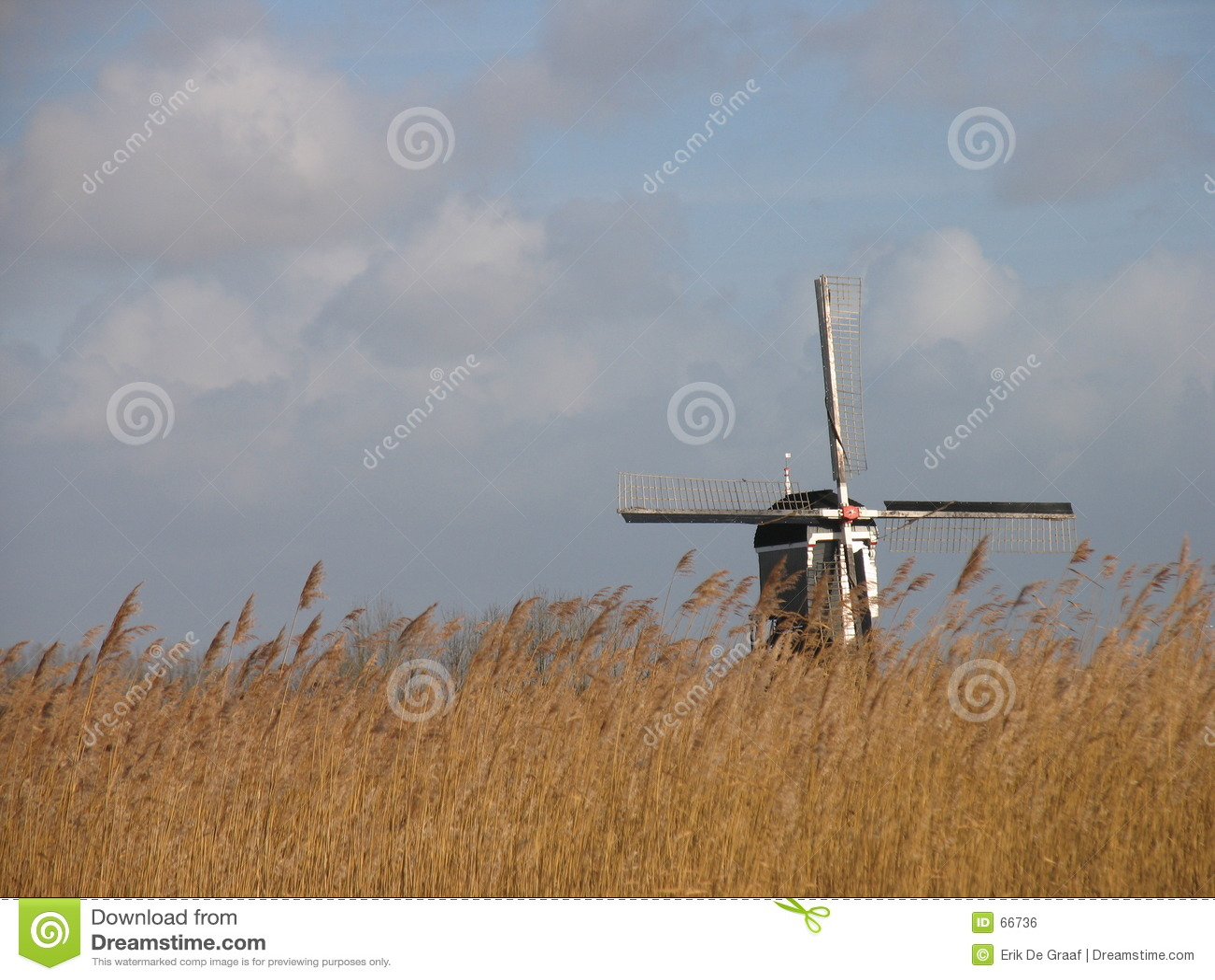 Horizontal tubulaire hollandais 2