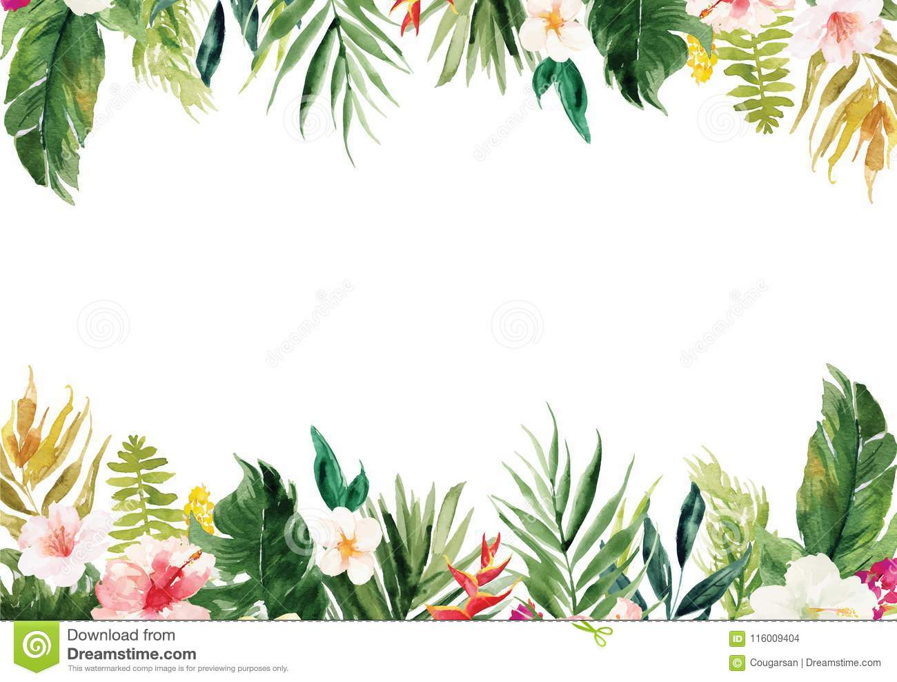 White Blank Paper Background With Plants And Flowers Border Stock