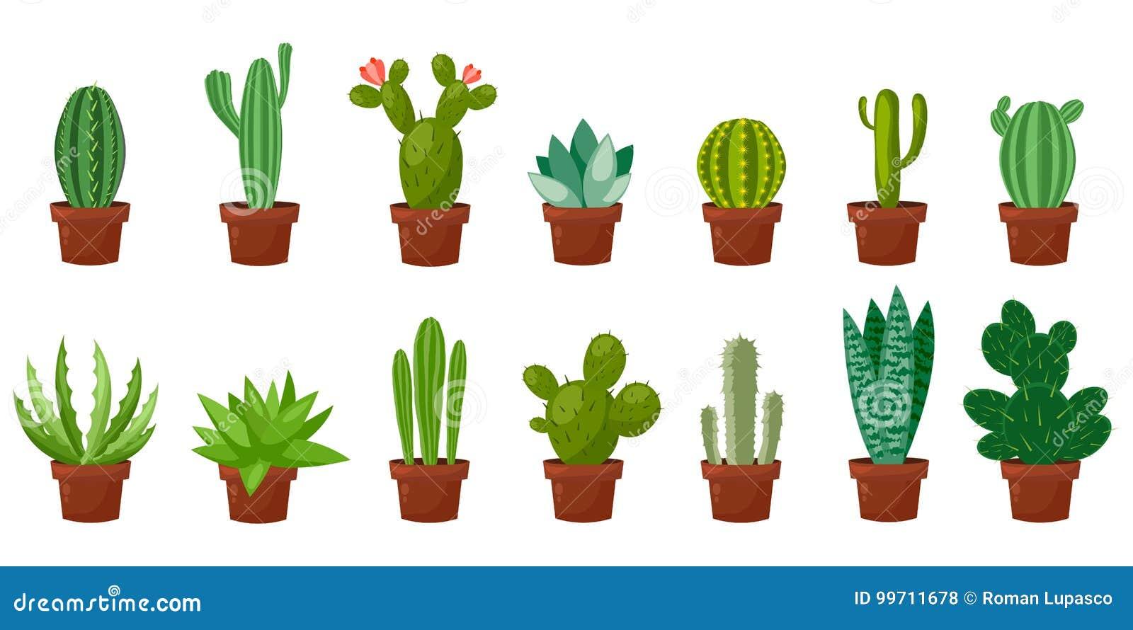 Horizontale bannerreeks van woestijn, ruimte groene cactus Vlakke, beeldverhaalstijl Vectorillustratie witte achtergrond element