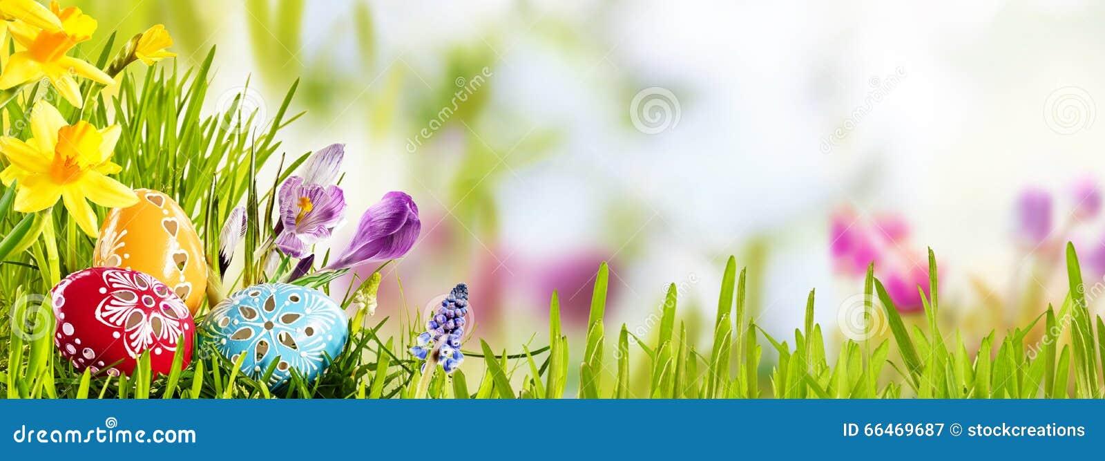 Horizontale Pasen-banner met eieren in een weide