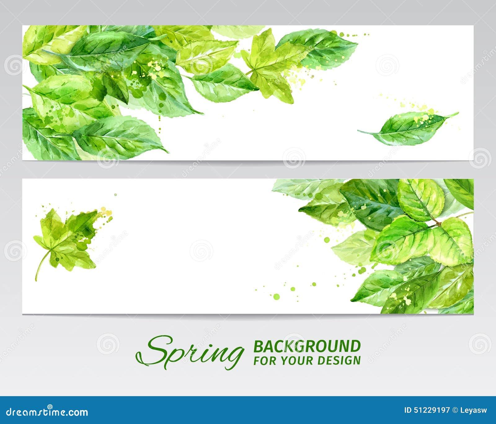 Horizontaler Hintergrund mit Grün verlässt und befleckt von der Farbe Aquarellvektor
