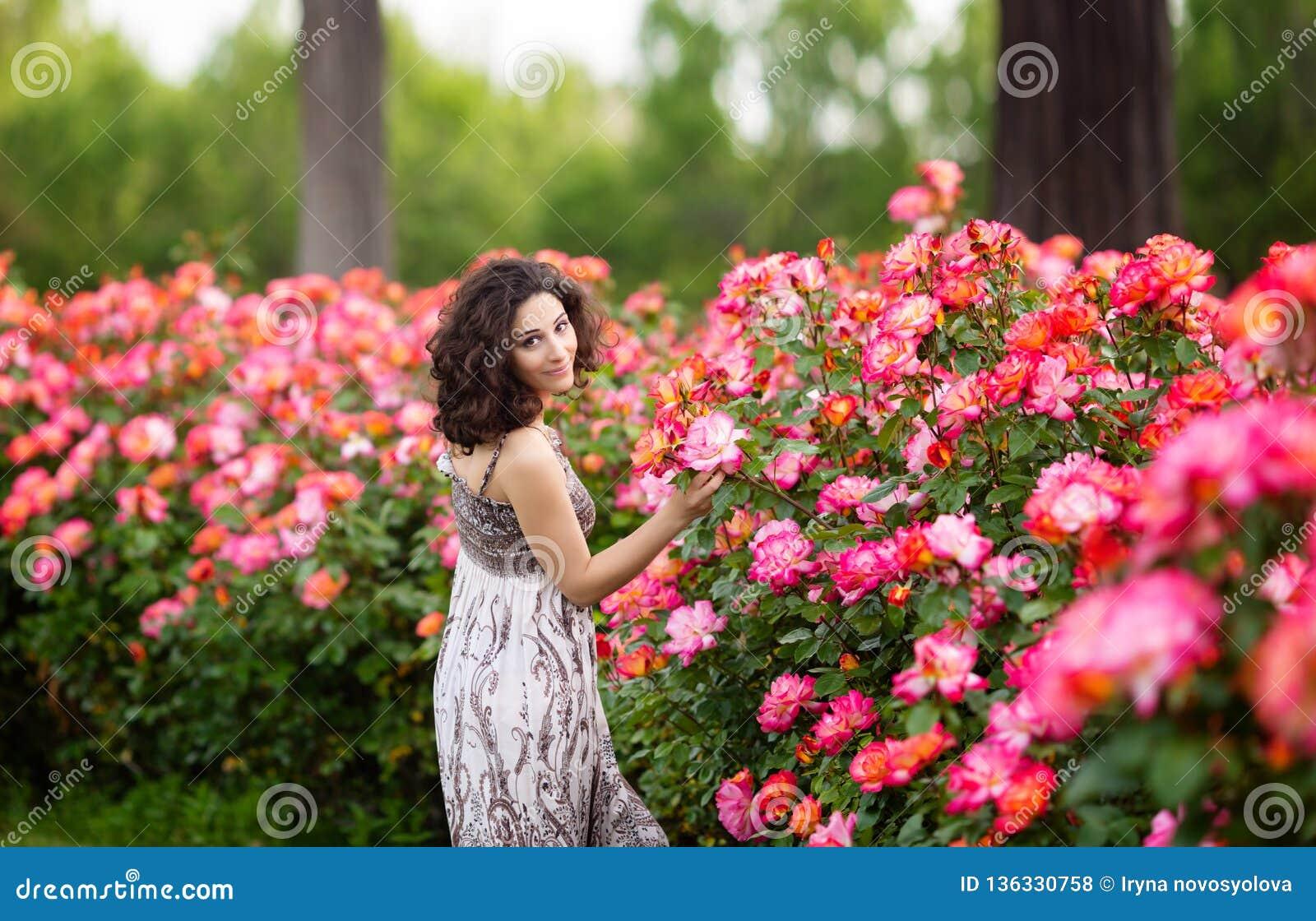 Horizontales Porträt der jungen attraktiven brunette kaukasischen Frau nahe enormem rosa Rosenbusch in einem Garten Lächeln, scha