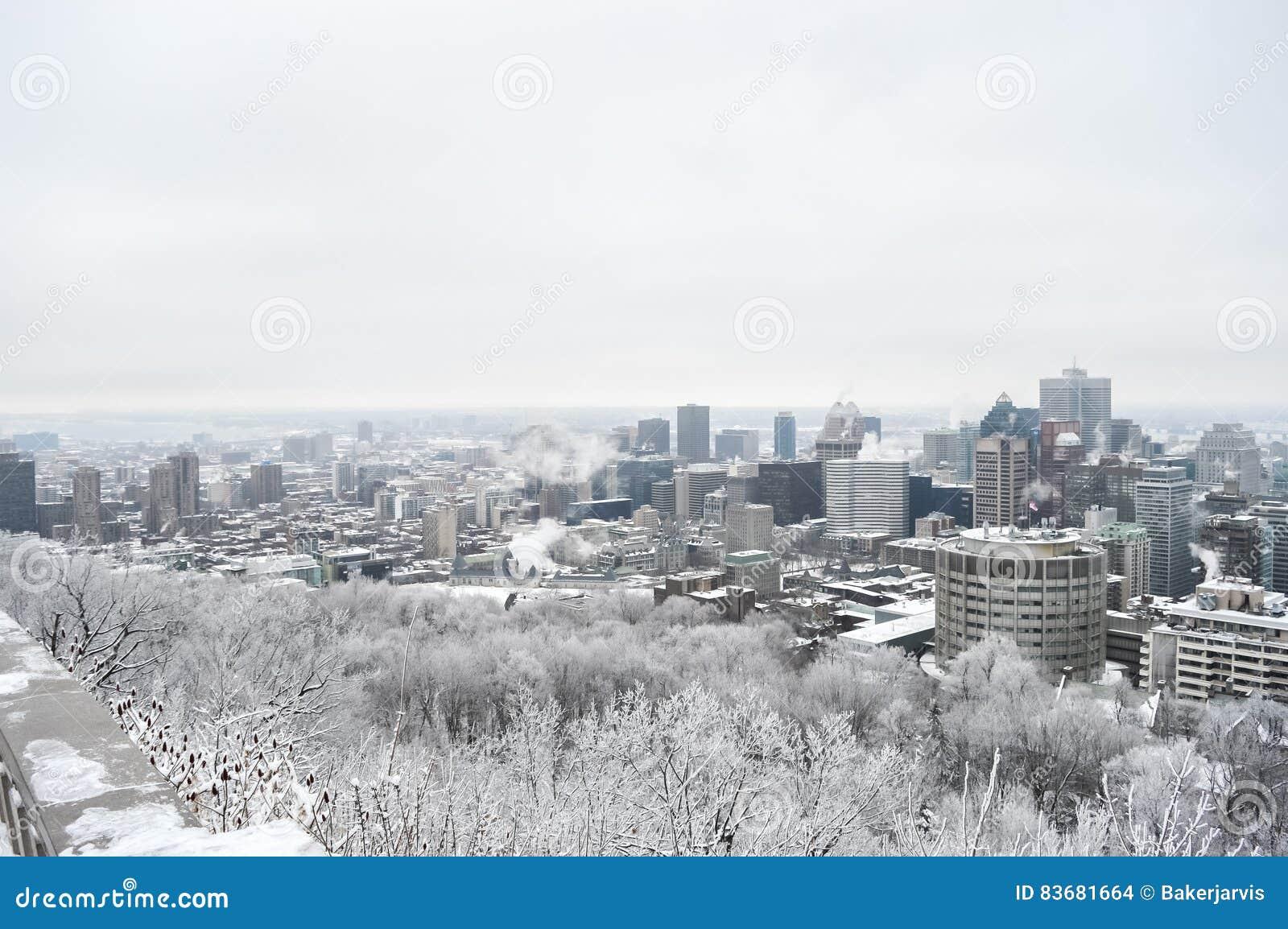 Horizonte de Montreal en nieve