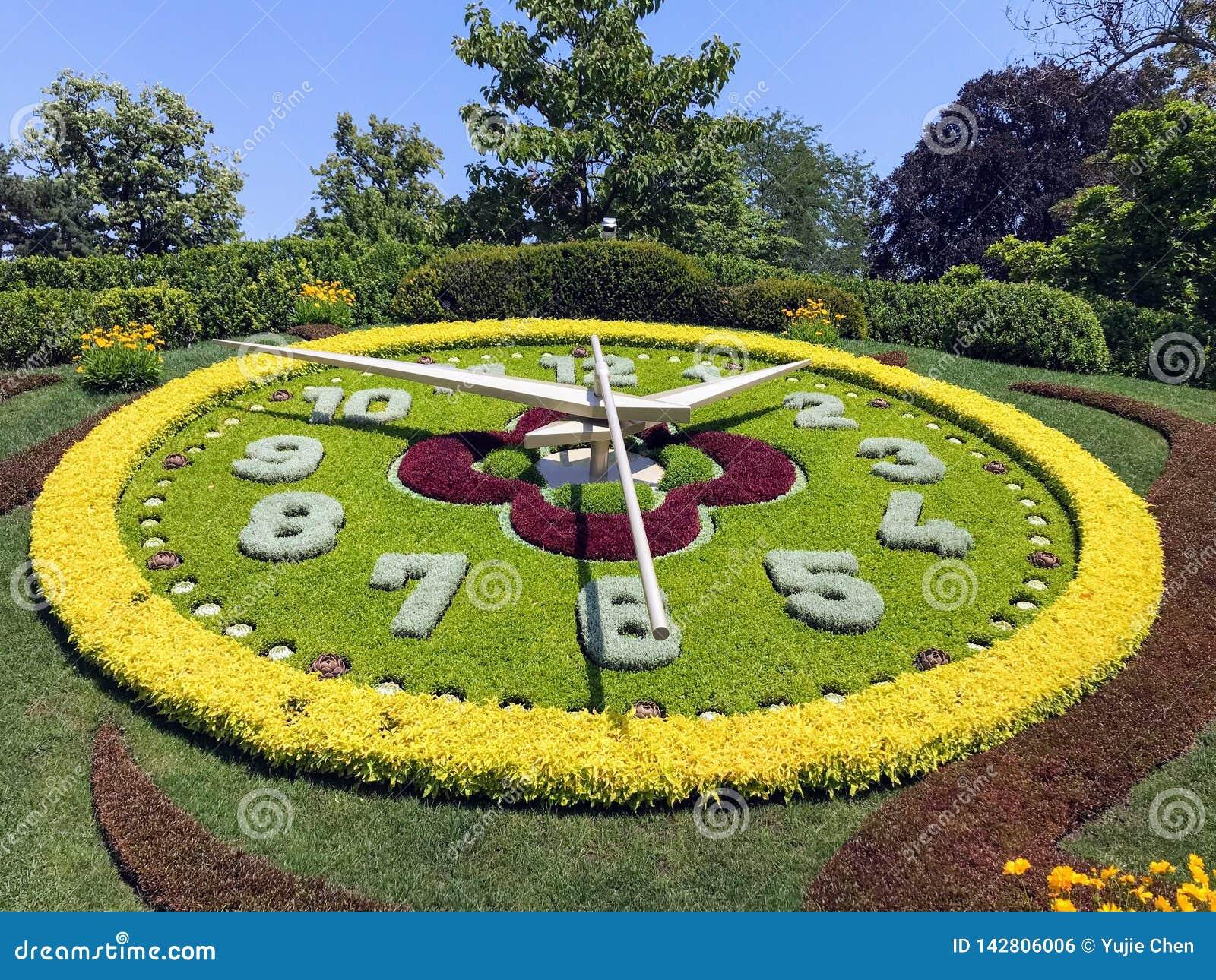 Horloge de fleur de Genève