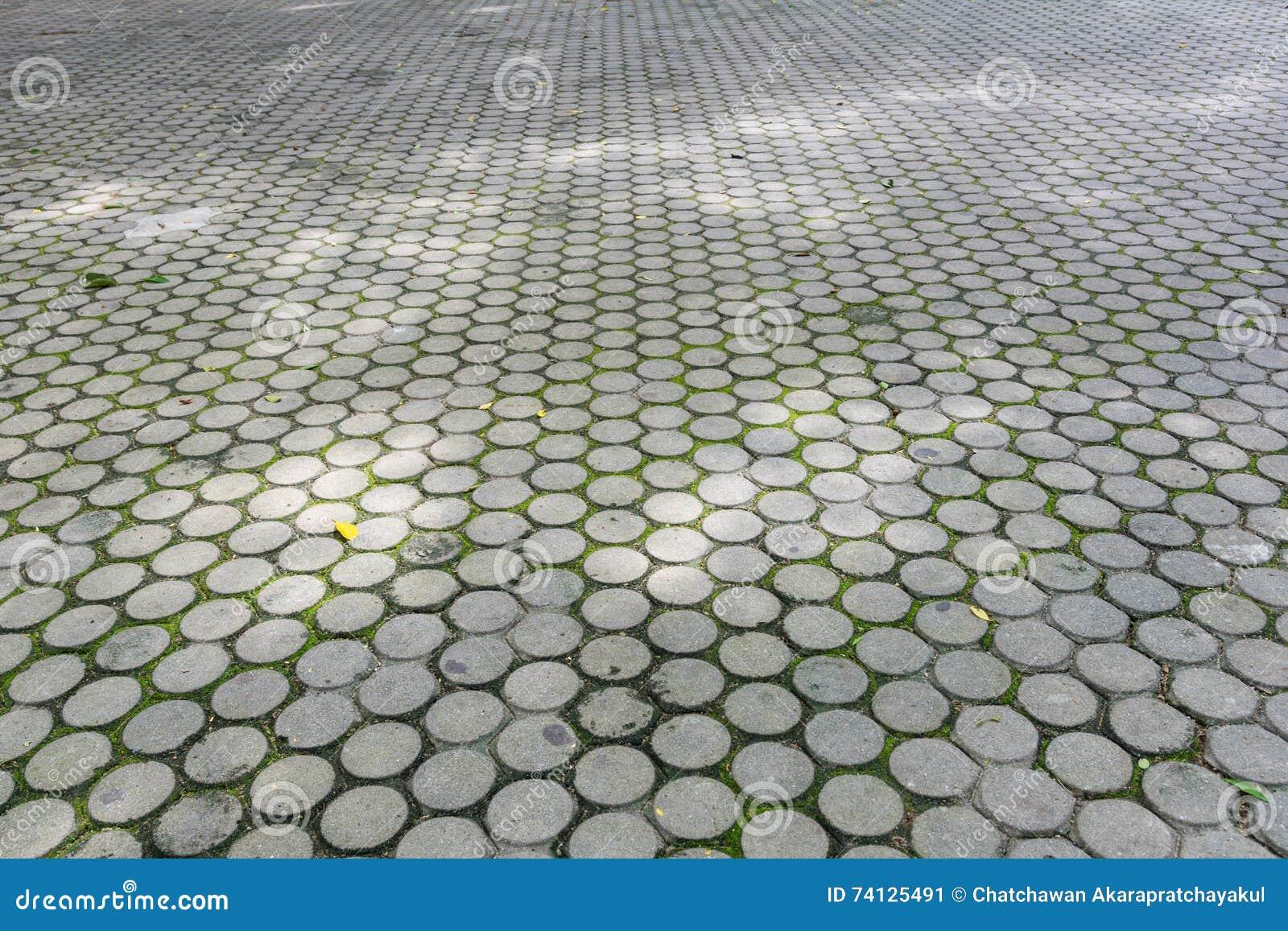Hormig n piso del bloque del cemento de camino en el for Camino hormigon