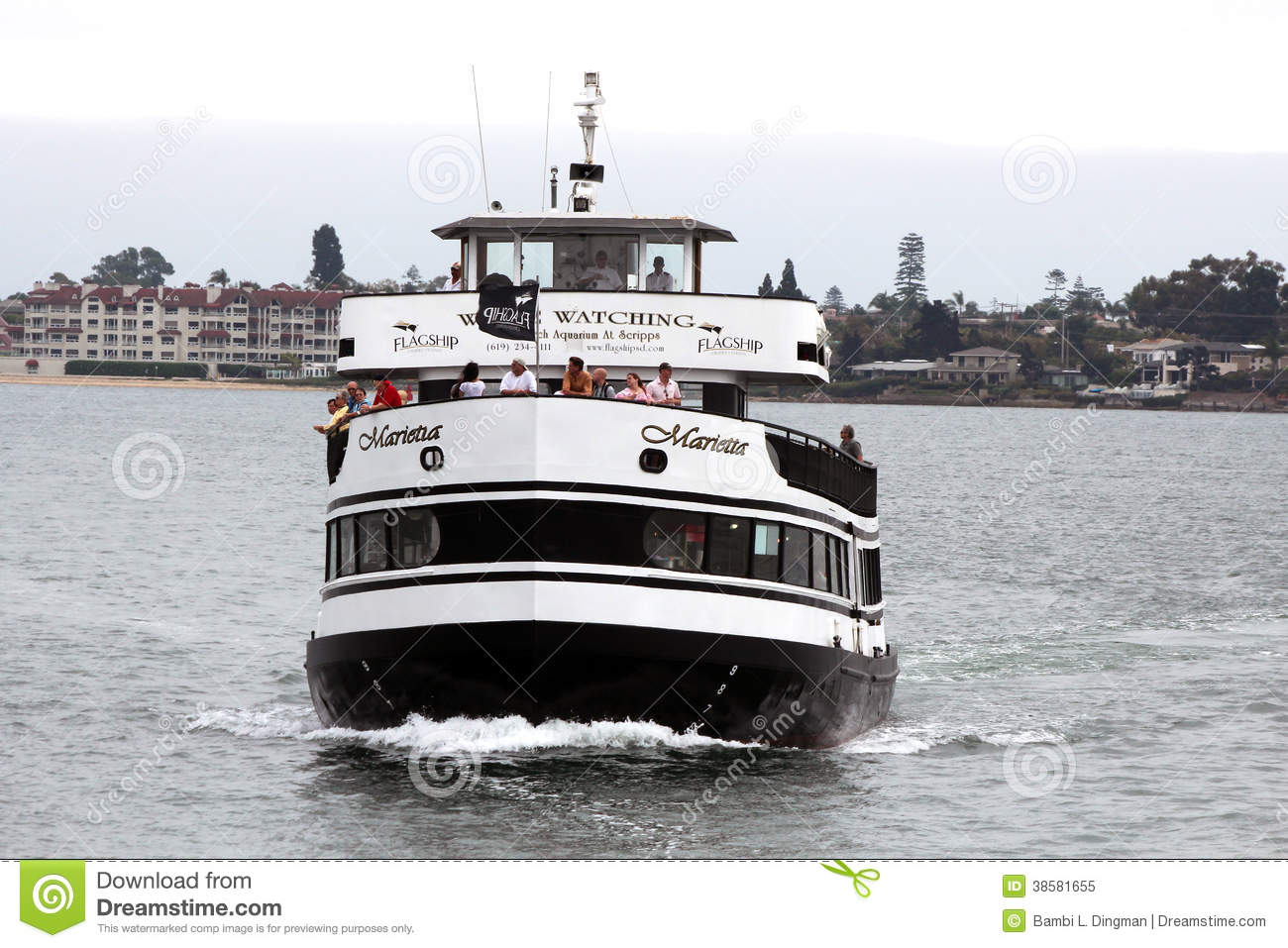 Coupons hornblower cruises san diego