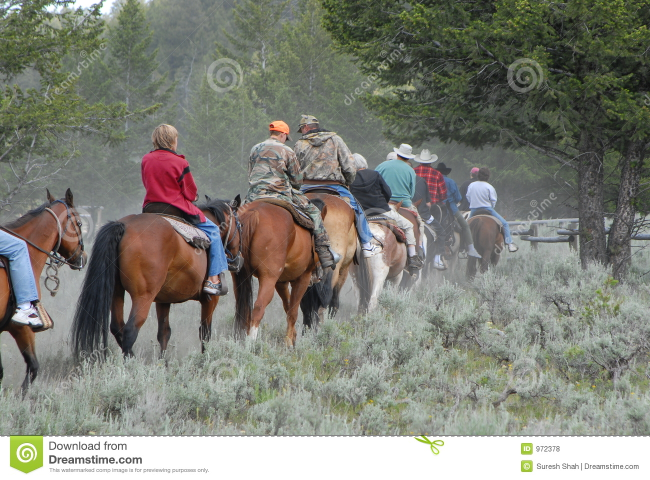 Horse back riding on trail