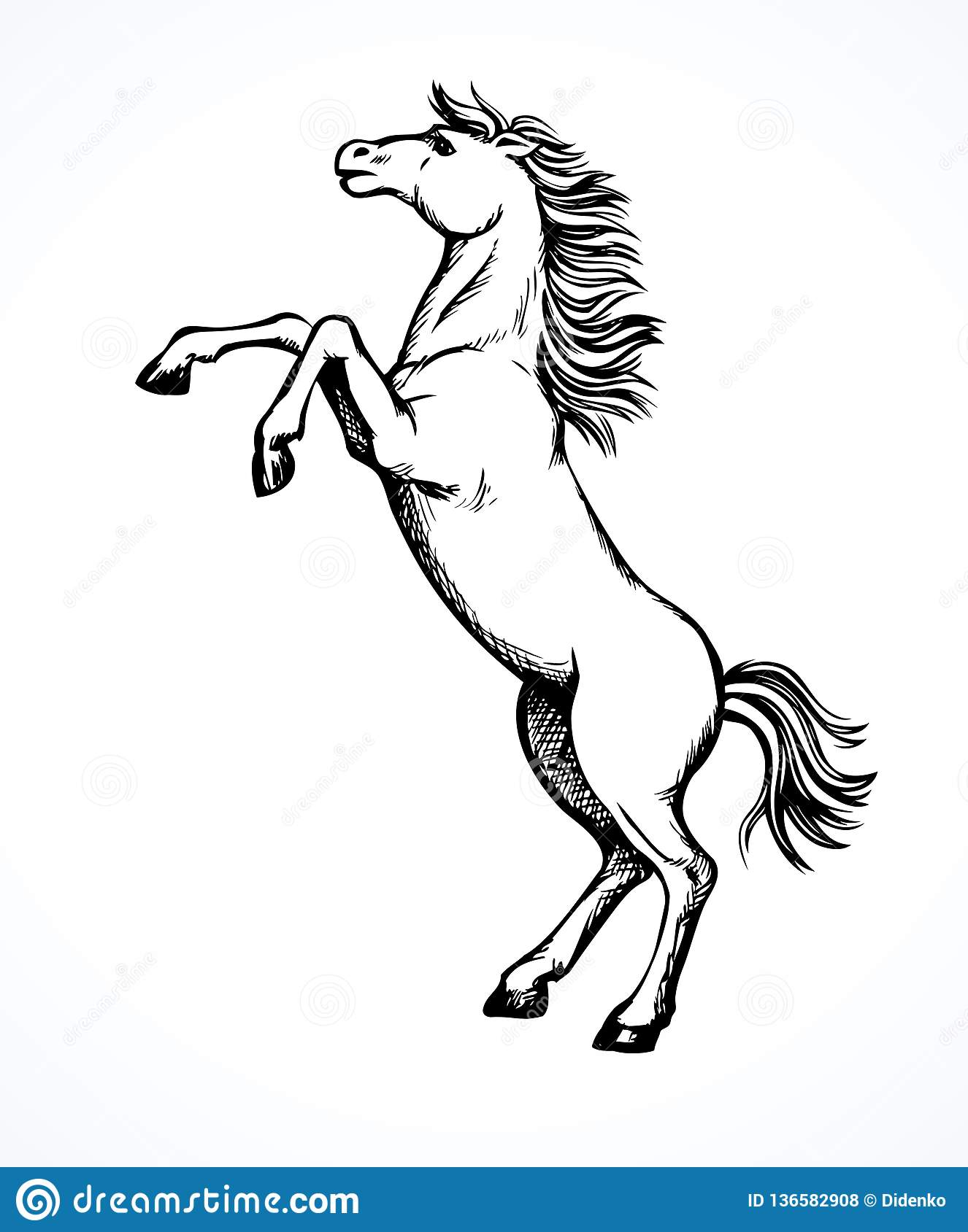 Horse Rearing Up Sketch Stock Illustrations 37 Horse Rearing Up Sketch Stock Illustrations Vectors Clipart Dreamstime