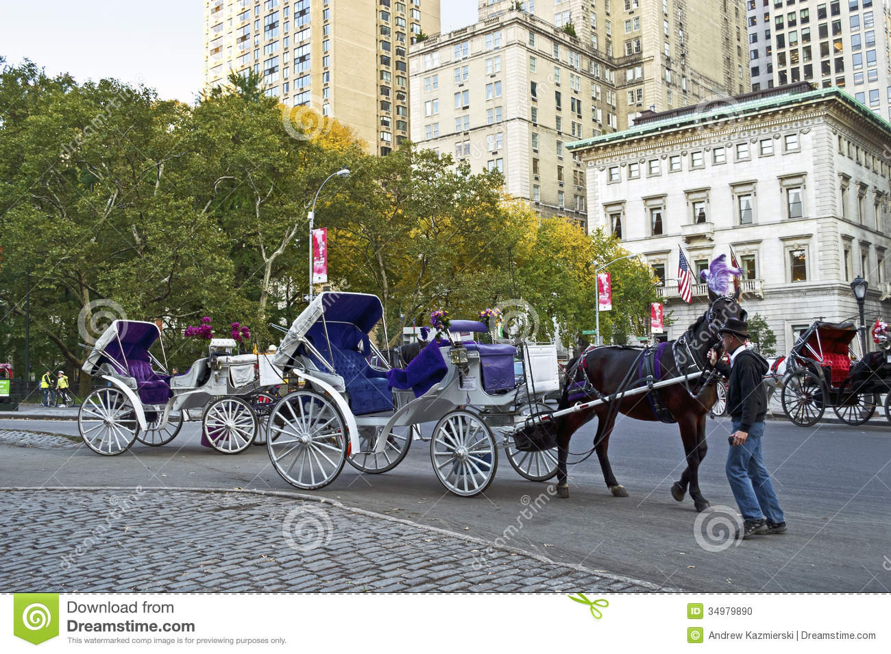 horse and buggy central park editorial image image 34979890. Black Bedroom Furniture Sets. Home Design Ideas