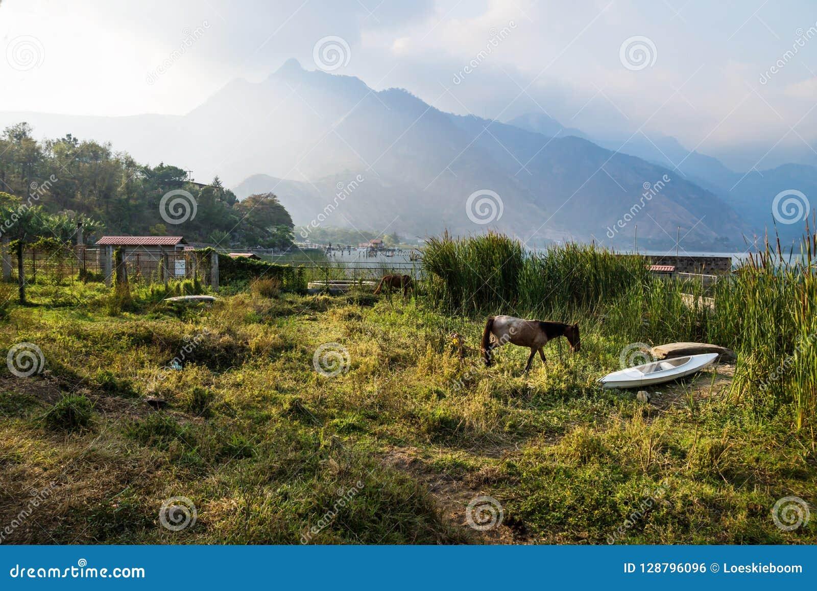 Horse and a canoe on a meadow along Lago Atitlan with mountainrange, San Juan la Laguna, Guatemala, Central America
