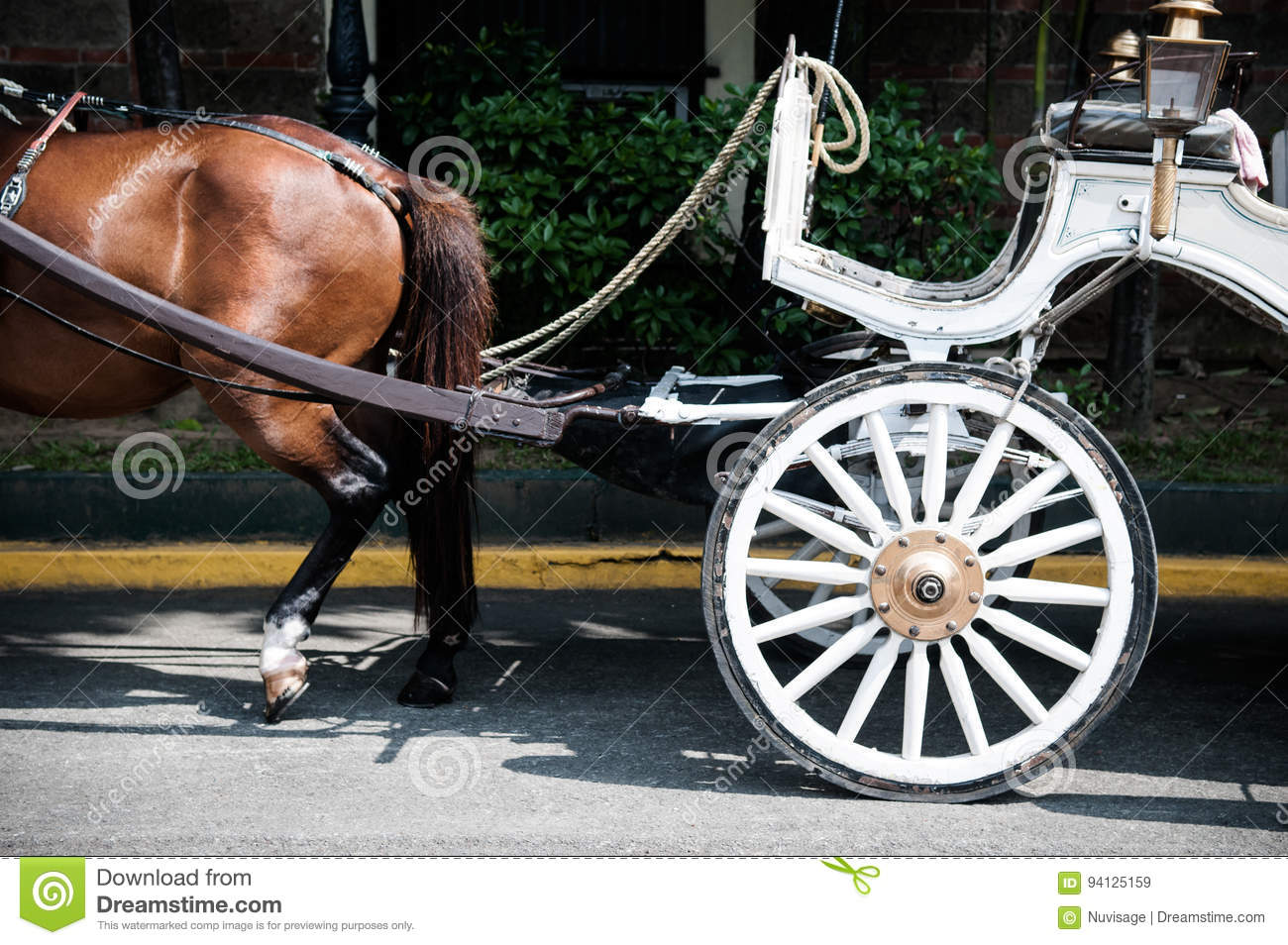 Horse&Carriage