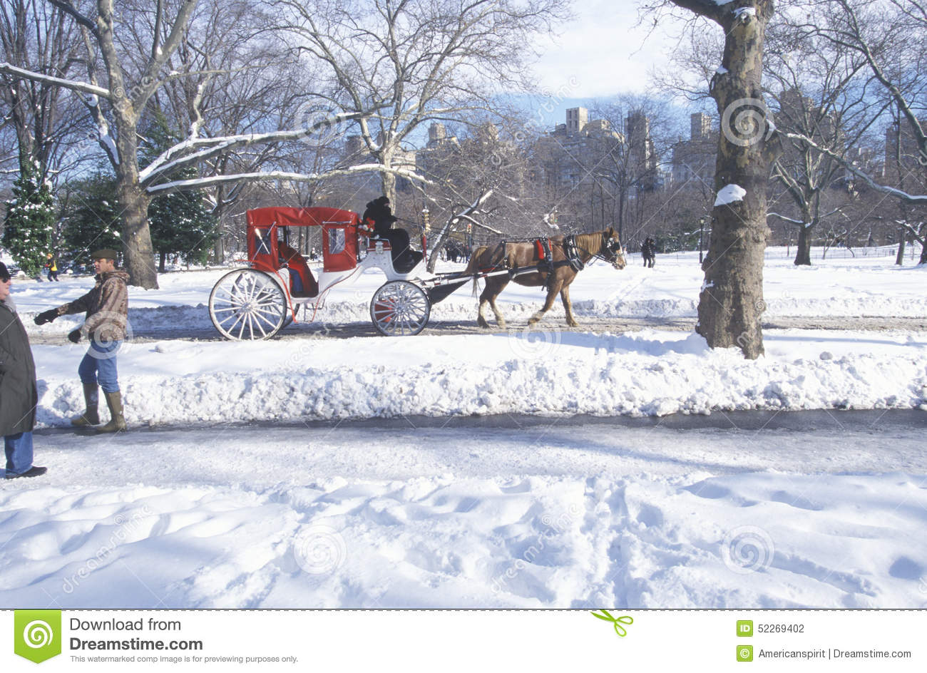 Editorial photography horse carriage ride in central park manhattan