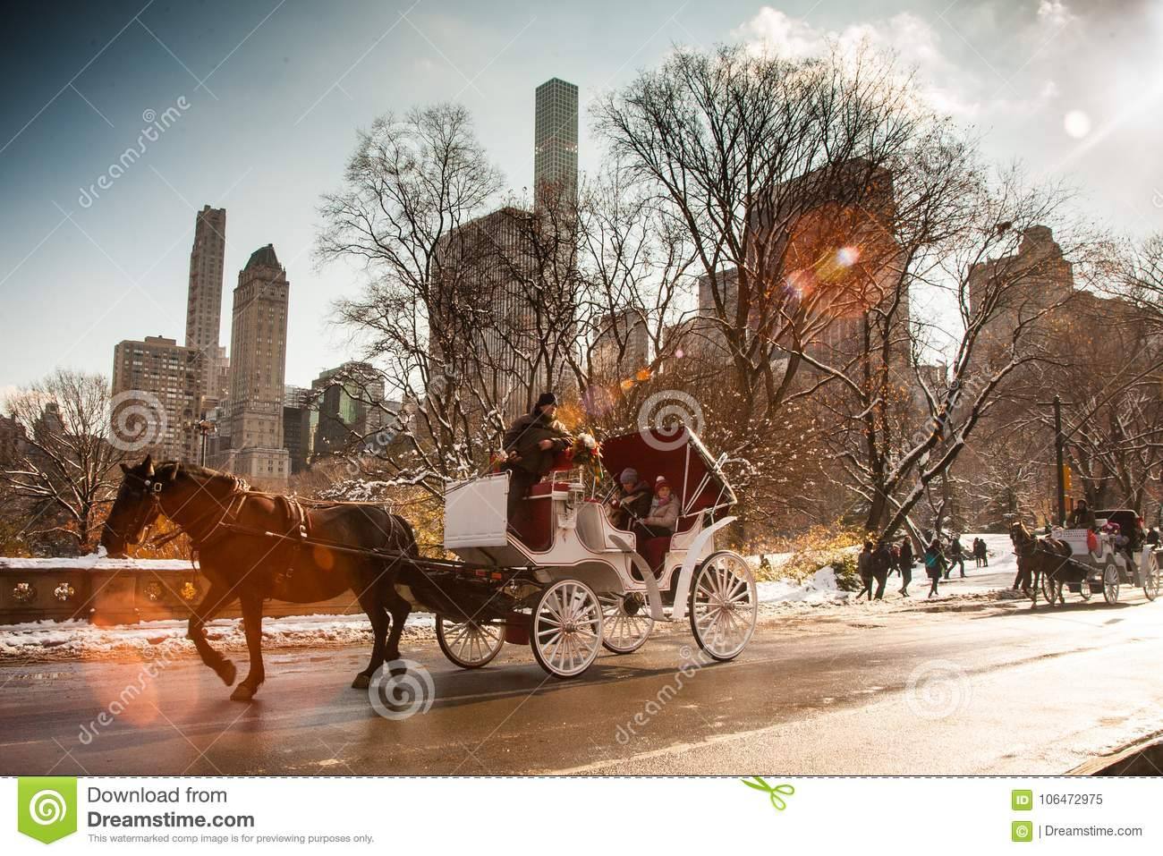 Horse Carriage Ride Central Park Nyc Editorial Image Image Of Christmas Period 106472975