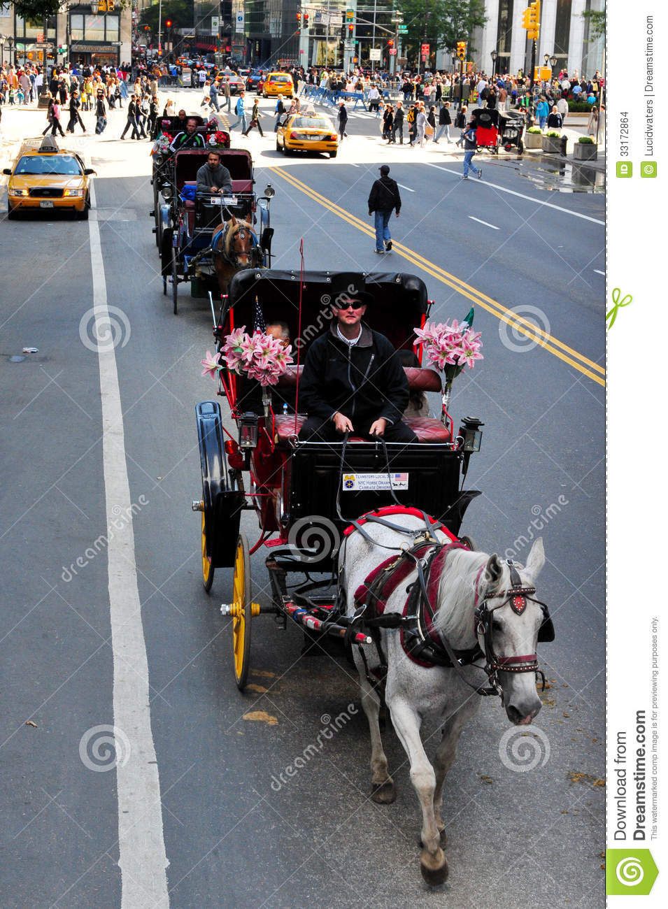 horse and carriage rides in central park editorial stock image image 33172864. Black Bedroom Furniture Sets. Home Design Ideas