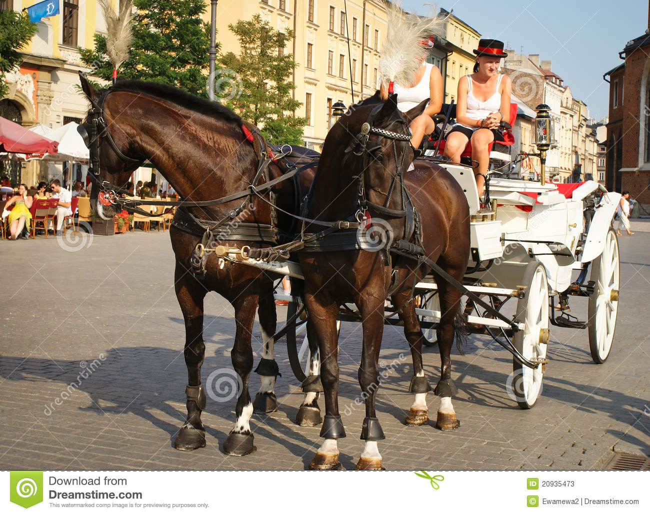 0e47c8a3aab Horse Carriage On A Square Market