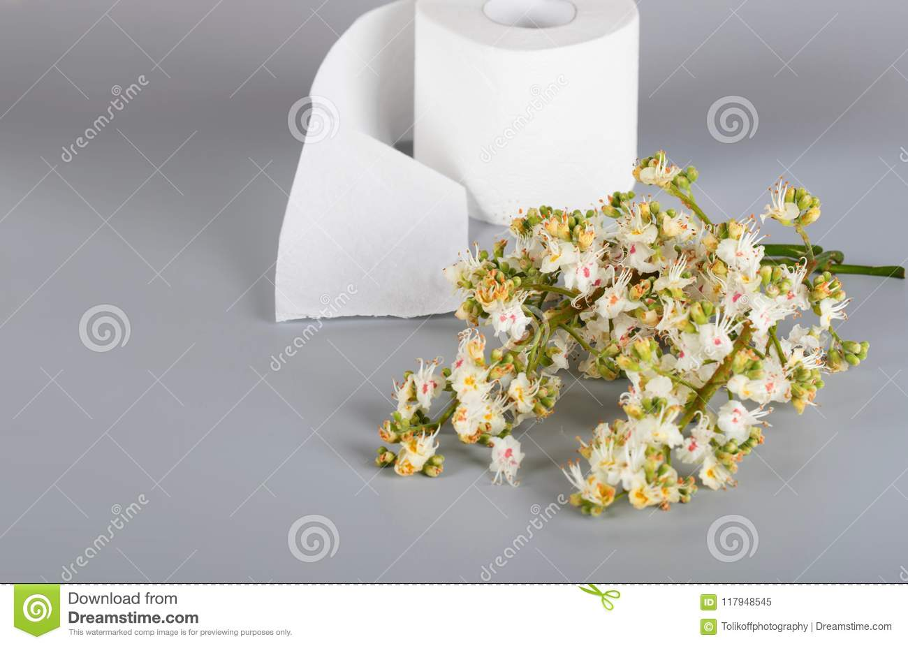 Horse Chestnut Flowers On A Gray Surface Roll Of Toilet Paper I