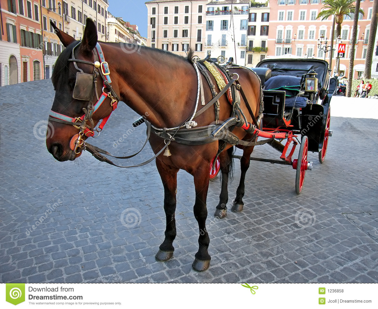 Horse coach in rome royalty free stock photos image 1236858 for Foto di cavalli da stampare