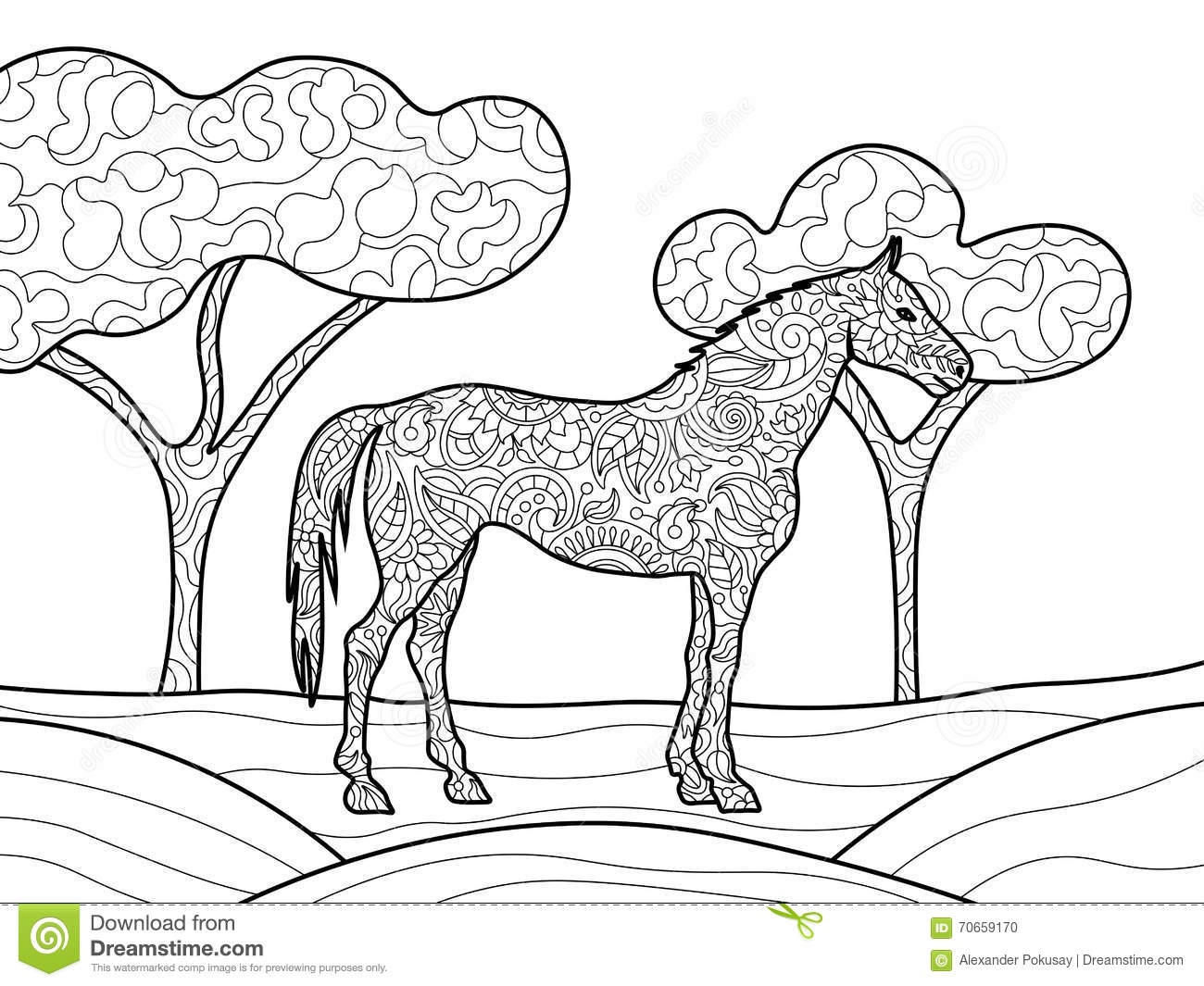 Royalty Free Vector Download Horse Coloring Book For Adults