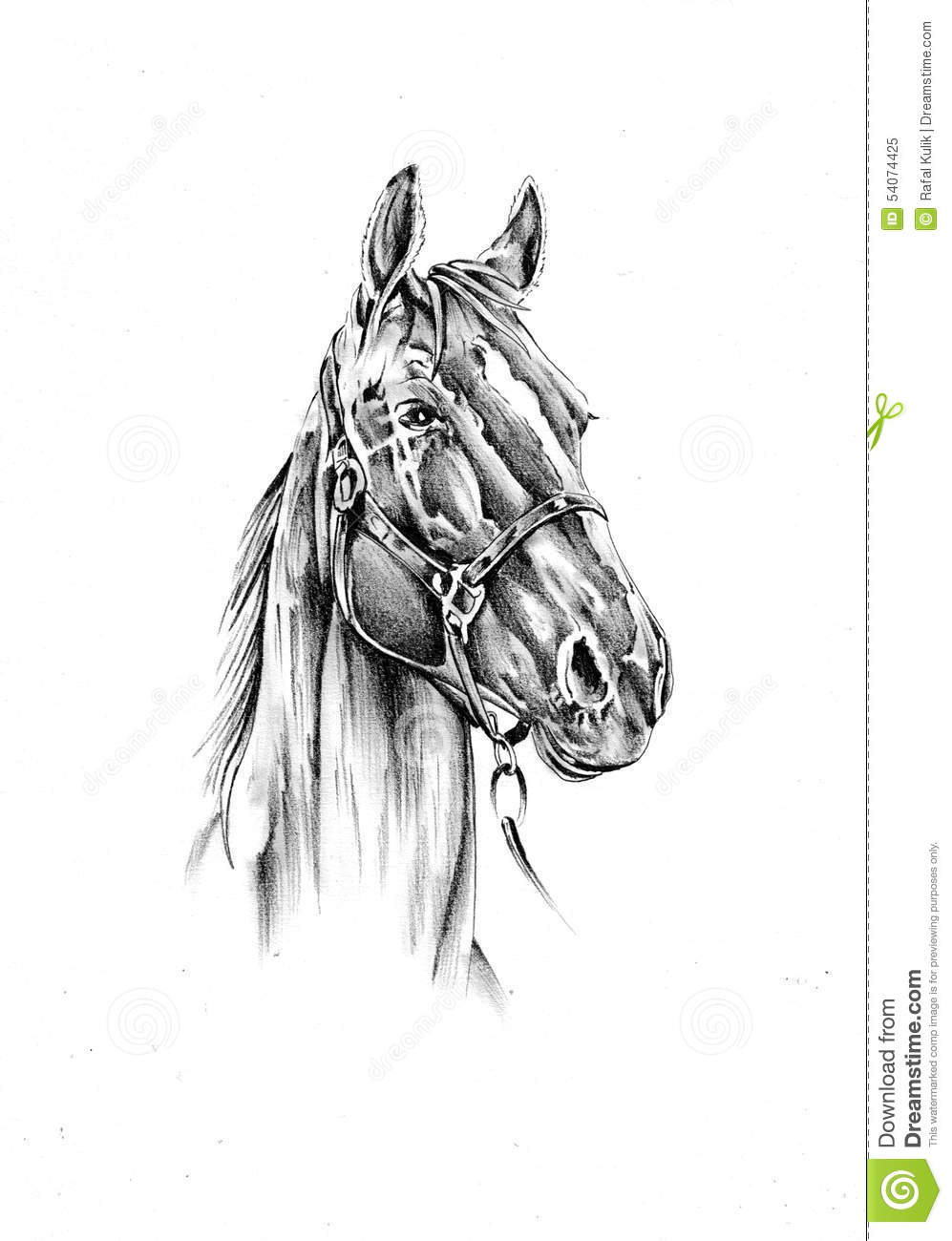 Horse Drawing Sketch Art Handmade Stock Illustration - Image: 54074425