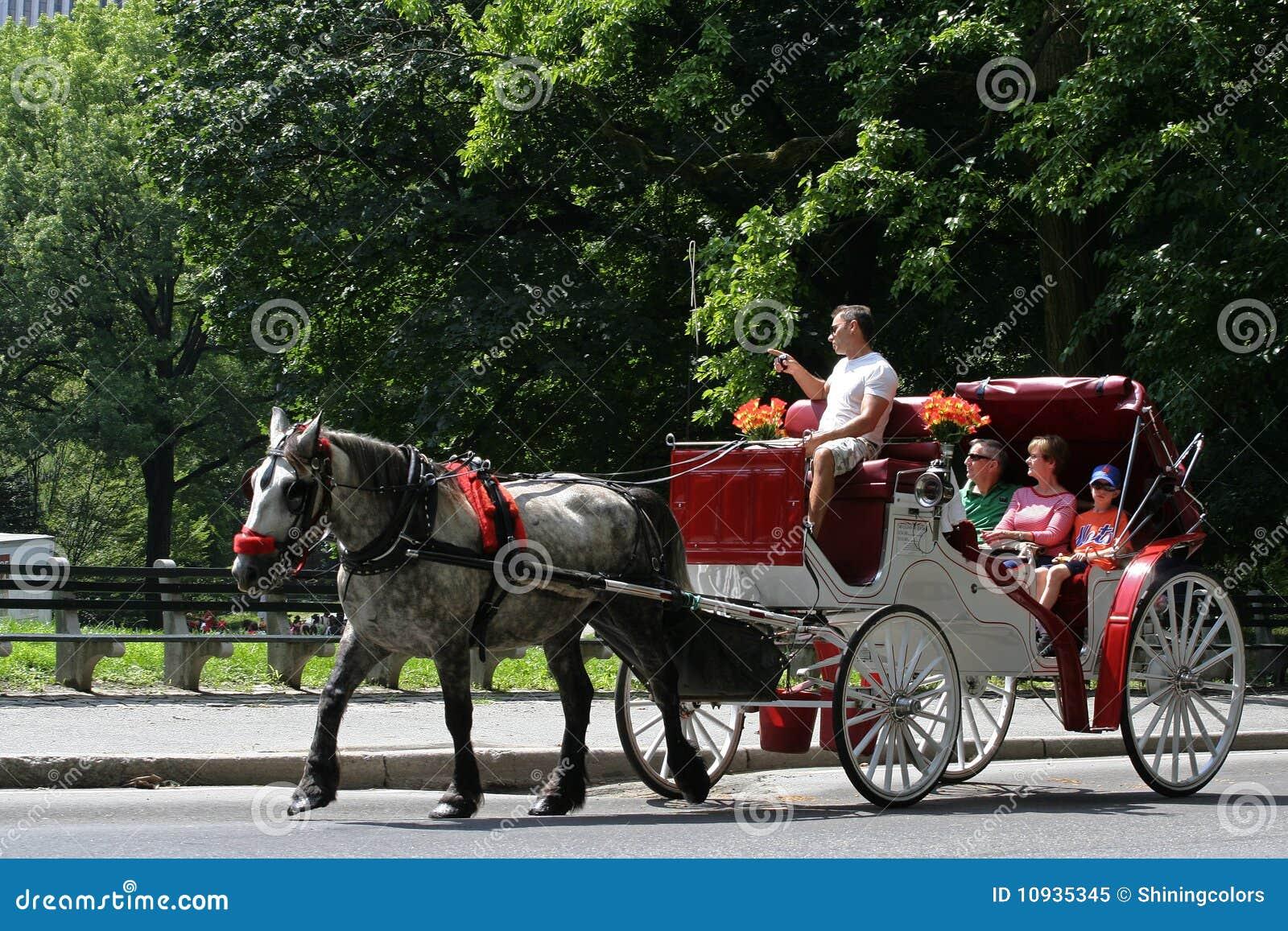 Horse-drawn езды экипажа в Central Park