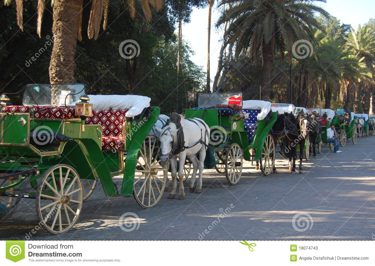 Horse Drawn Carriages in Morocco