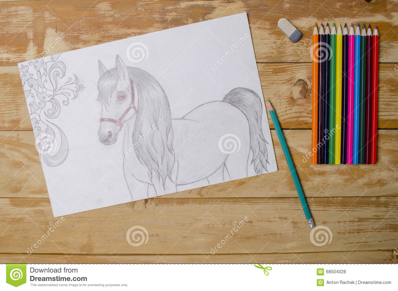 Beautiful Pencil Sketch Horse Photos Free Royalty Free Stock Photos From Dreamstime