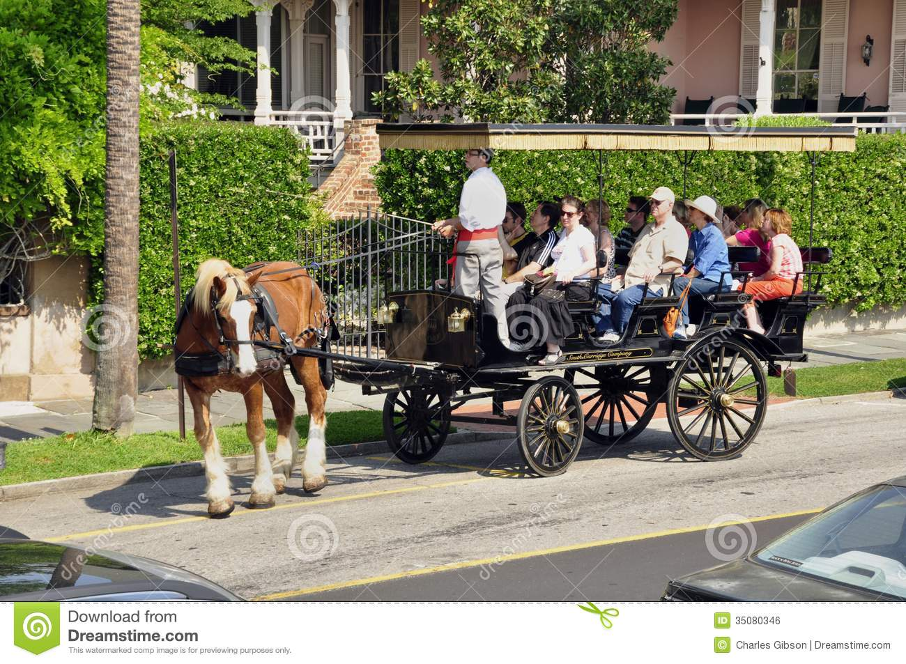 Horse Drawn Tourist Wagon Charleston Editorial Photo