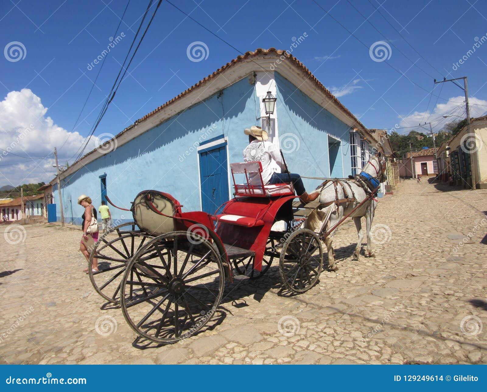 Horse-drawn Trinidad