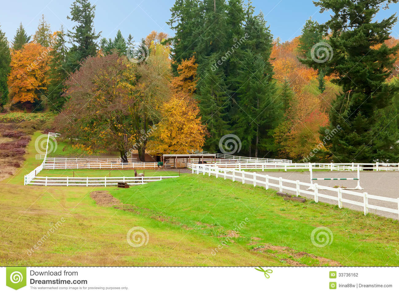 Horse farm with white fence and fall colorful leaves.