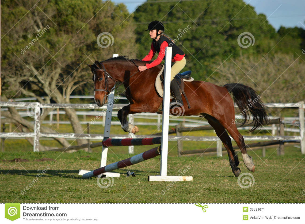 Horse riding girl child show jumping