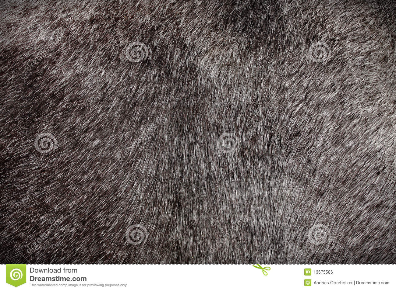 Horse Hair Close Up Chestnut Color Stock Photo Image Of Coarse